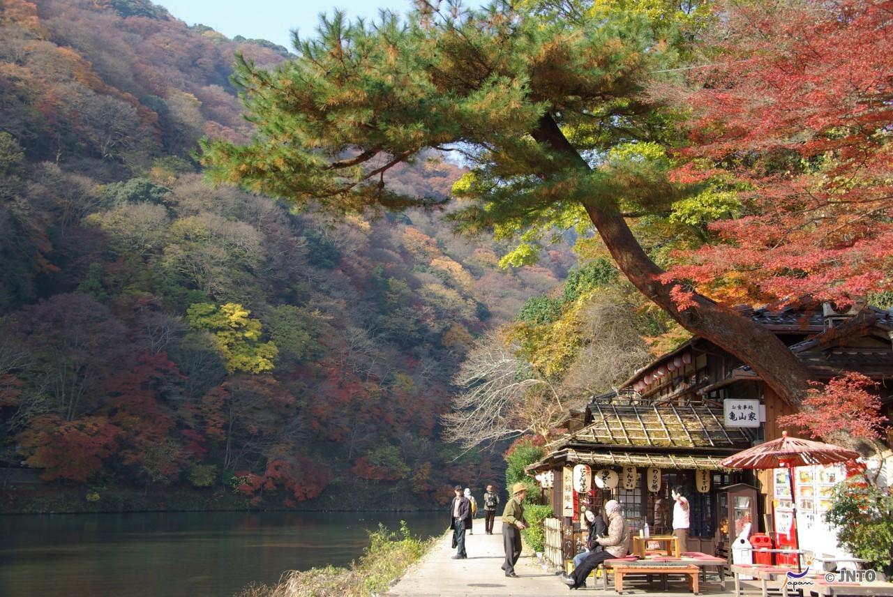 How to choose discount railway ticket and pass in Kansai (Kyoto, Osaka, Kobe, Nara) area