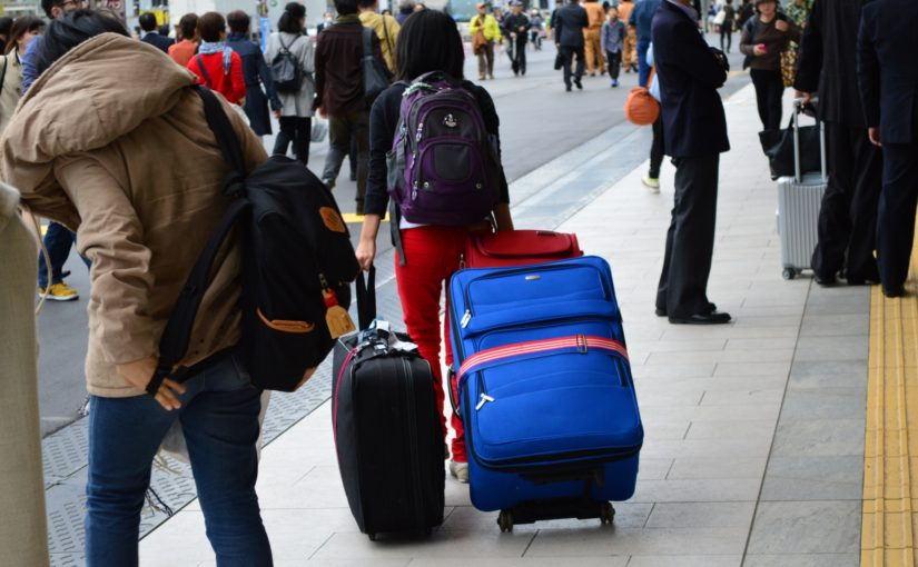 suitcase traveler