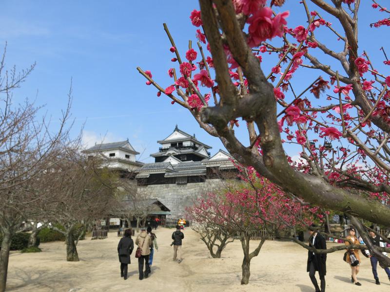 Trip to Shikoku in 2015 spring – Part 2, from Toyo port to Matsumaru via Matsuyama.