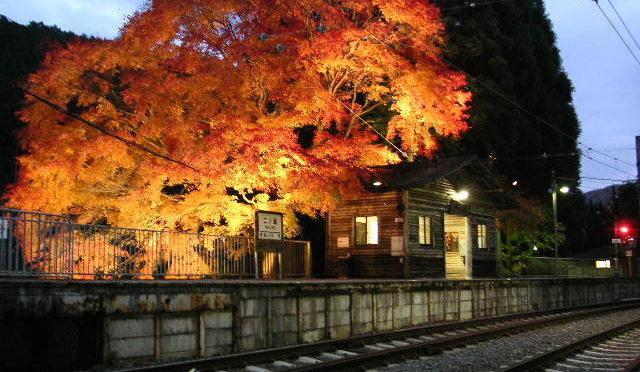 Schedule of 2016 fall seasonal trains of Japan Railways